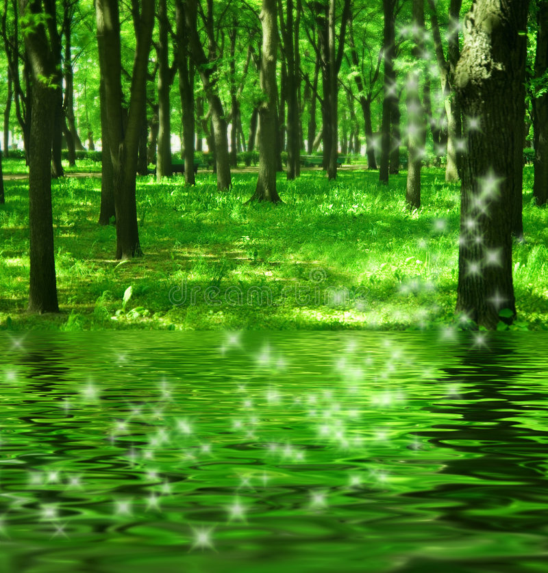 Download Magic Forest Near The River Stock Image - Image: 2608107