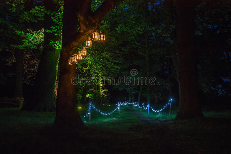 Magic light night trail in the old park stock images