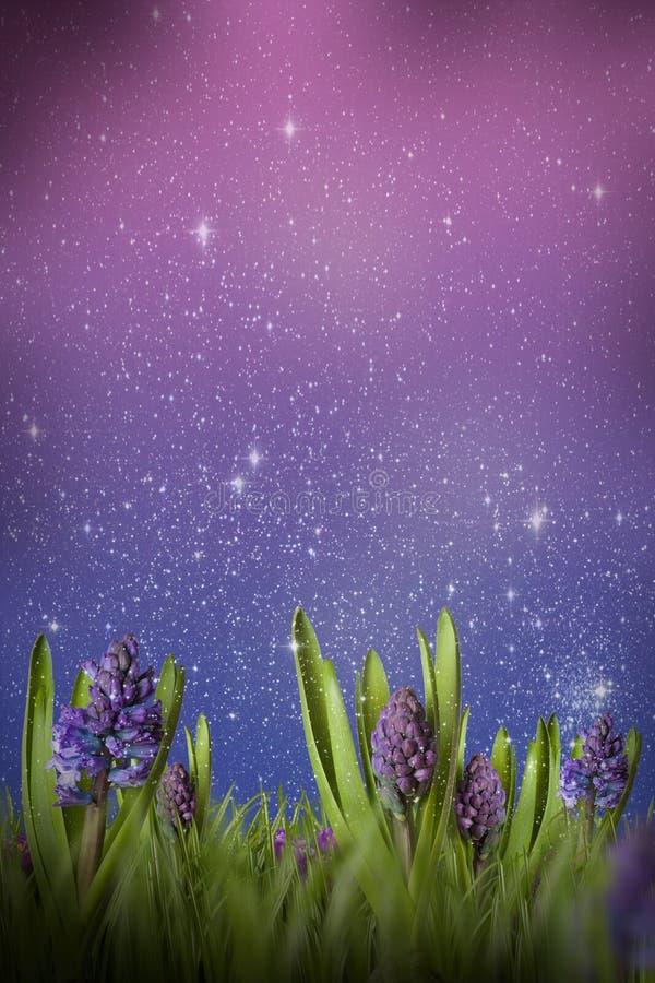 Free Magic Meadow Royalty Free Stock Image - 14281366