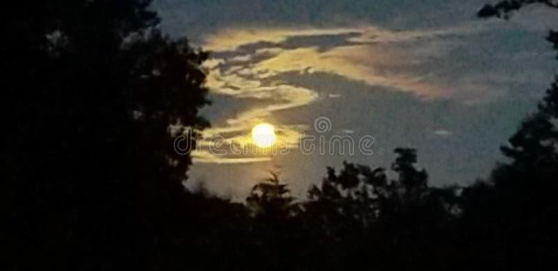 Magic moon at midnight stock images