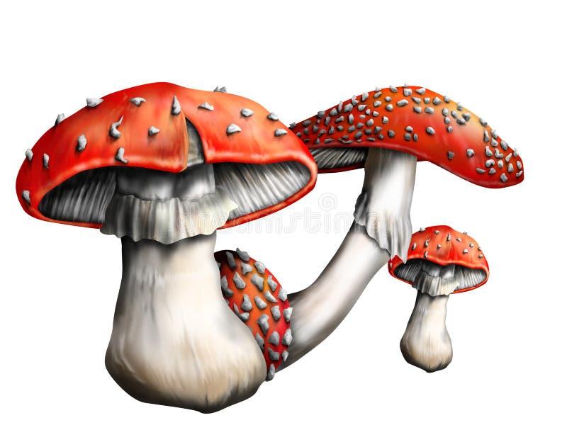 Download Magic mushroom stock illustration. Image of isolated - 24586591