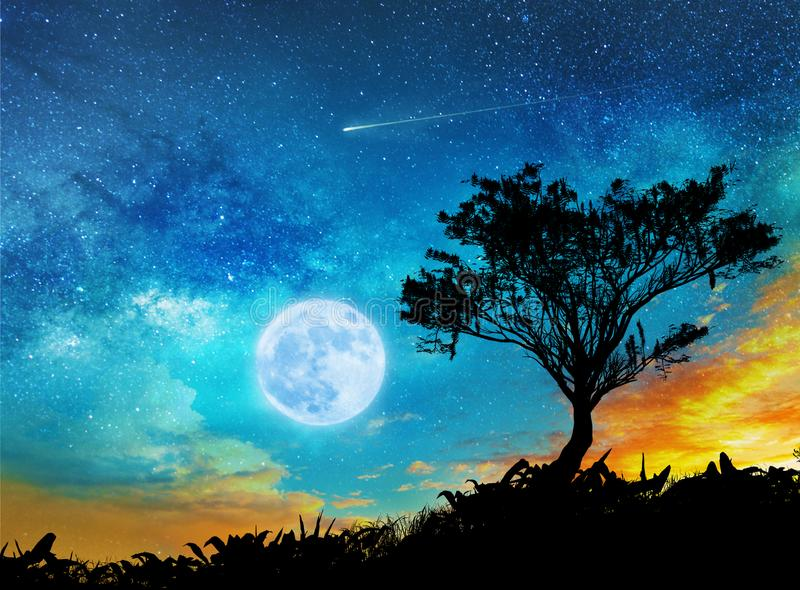 A magic night lanscape with starry sky stock photography