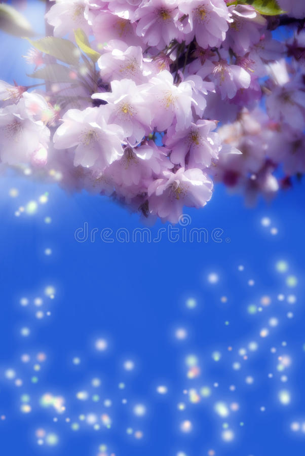 Magic spring stock photos