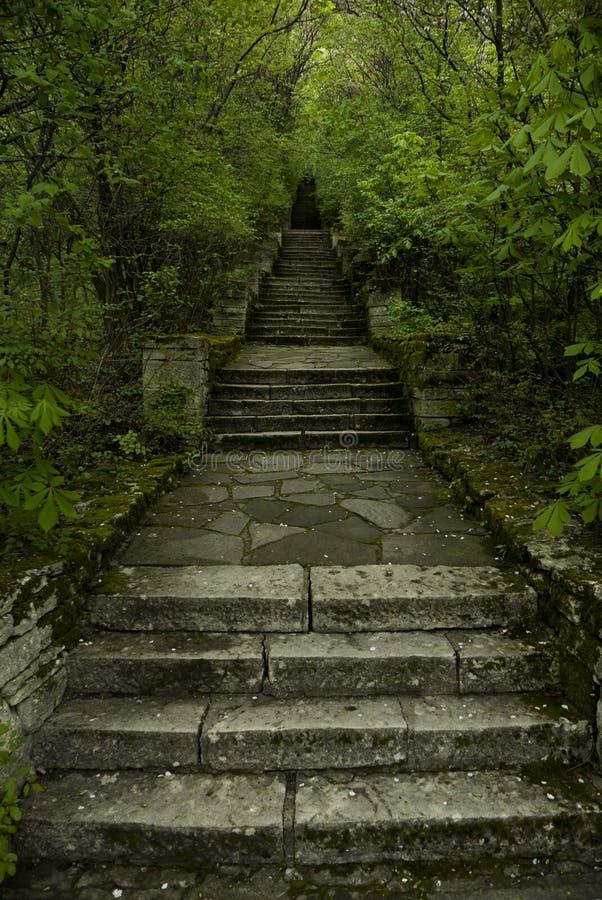 Free Magic Steps Stock Image - 86259271