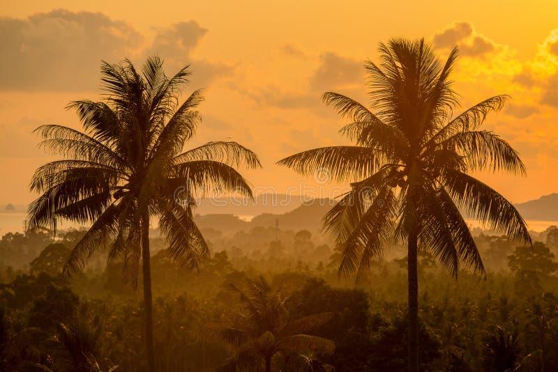 Magic sunrise on a tropical island Koh Samui, Thailand. Beautiful sunrise at Maenam beach, Koh samui island, Thailand stock photography