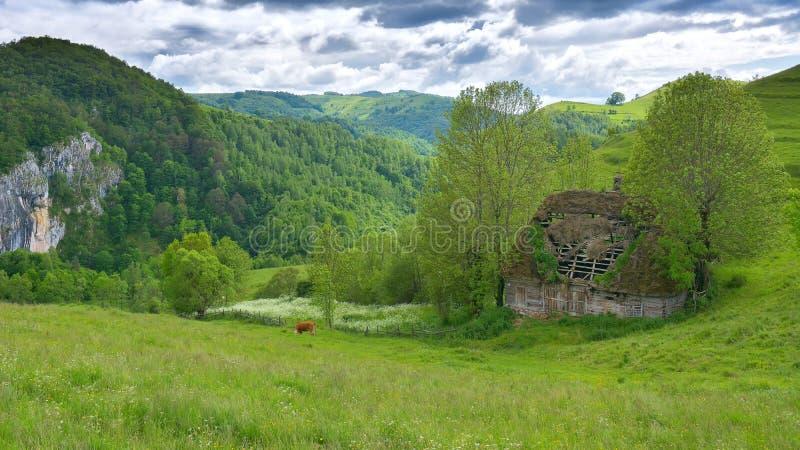Download Magic Transylvanian Village - Dumesti - Romania Stock Image - Image: 83700347
