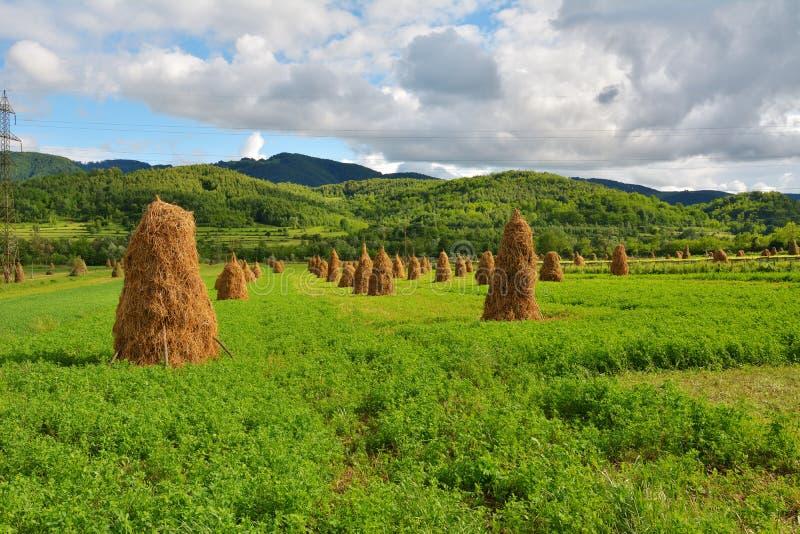 Download Magic Transylvanian Village - Dumesti - Romania Stock Photo - Image: 83700879
