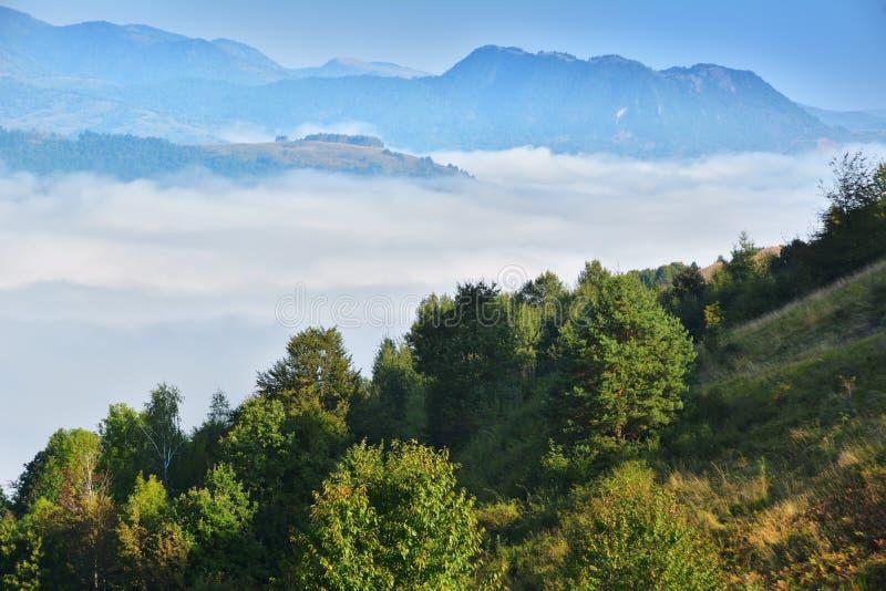 Download Magic Transylvanian Village - Dumesti - Romania Stock Photo - Image: 83702142
