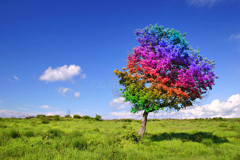 Magic Tree. On grass land royalty free stock images