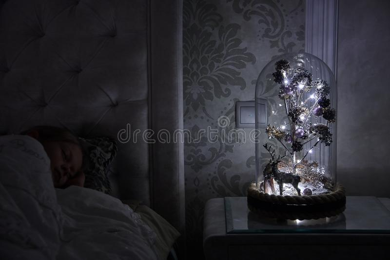 A Magic Tree Under A Glass Cupola royalty free stock photos