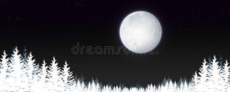 Magic Winter Night Landscape stock illustration
