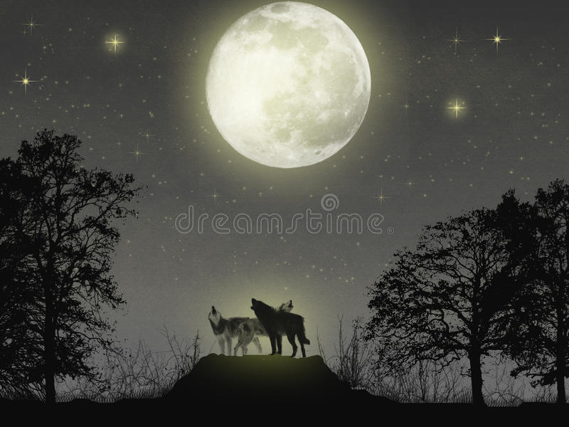 Download Magic Wolves Royalty Free Stock Photography - Image: 13973567
