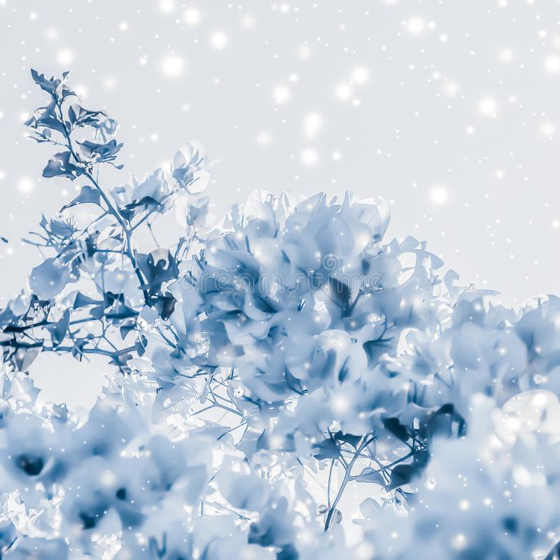 Christmas, New Years blue floral nature background, holiday card design, flower tree and snow glitter as winter season sale. Magical, branding and festive royalty free stock photo