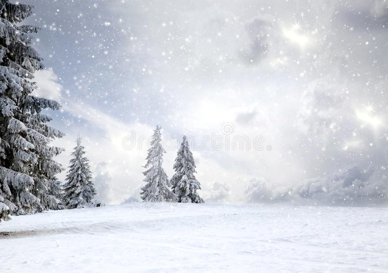 Magical Christmas card with fairy tale winter landscape with snow covered firs. Holiday, background, nature, sky, forest, snowy, travel, sunset, vacation stock images