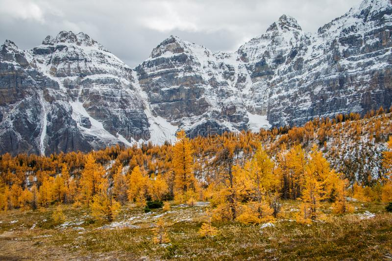 Magical colors of autumn season in Canadian rockies stock photo