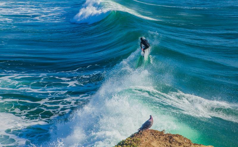 The magical huge waves in the bay of santa cruz that are rolling. Santa Cruz, United States - January 27 , 2013 :  Surf capitol off the US. Only the bravest stock image