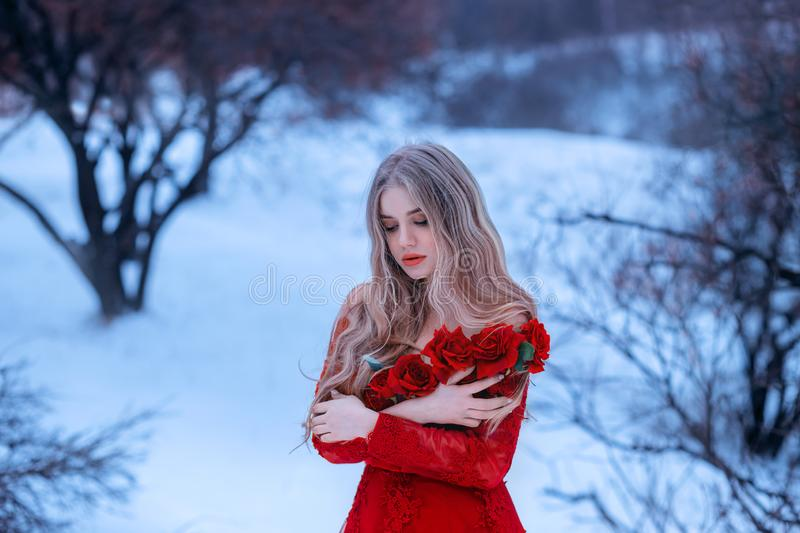 Magical image of attractive blonde girl in gorgeous red dress decorated with flowers, Rose princess trying to keep warm. In snowy forest, wonderful work of make stock photos