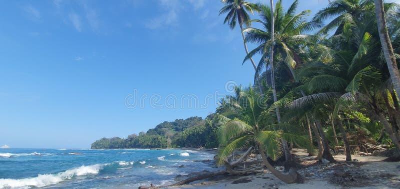 Magical island stock photos