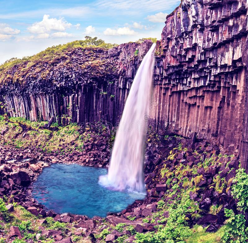Magical landscape with a famous Svartifoss waterfall in the middle of basalt pillars in Skaftafell, Vatnajokull National Park, stock photos