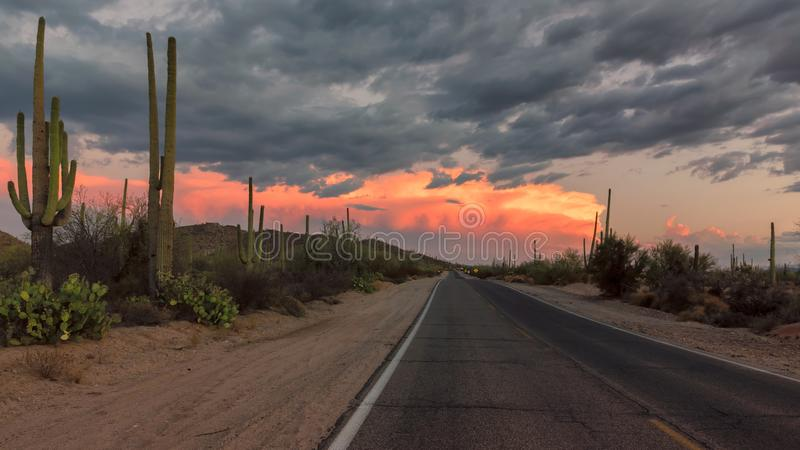 Arizona Road at sunset, Tucson, Arizona. The Magical Landscape in Saguaro National Park, Panoramic Road at sunset, Tucson, Arizona stock photo