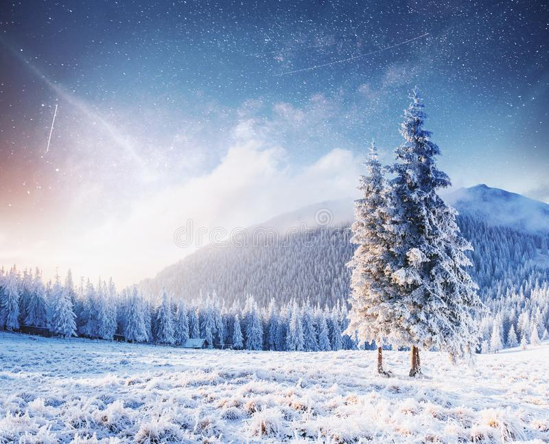 Magical moment, snow covered trees. Winter landscape. Vibrant night sky with stars and nebula and galaxy royalty free stock photos