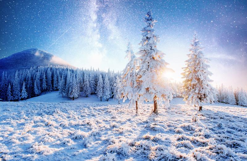 Magical moment, snow covered trees. Winter landscape. Vibrant night sky with stars and nebula and galaxy royalty free stock image