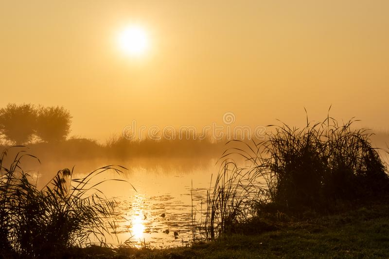 Magical moments as the rising sun reflects in the water during a foggy morning. Near Leidschendam, The Netherlands royalty free stock photo
