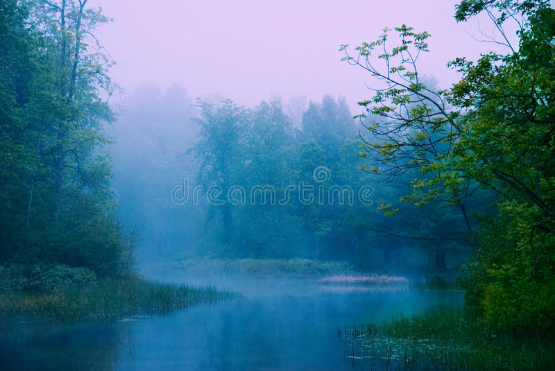 Magical morning royalty free stock photography