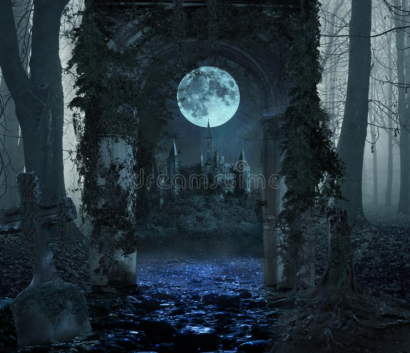 Magical portal in the forest with the castle in the moonlight royalty free stock image