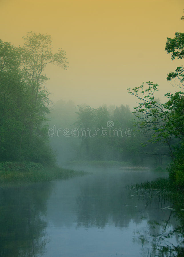 Magical River Stock Image