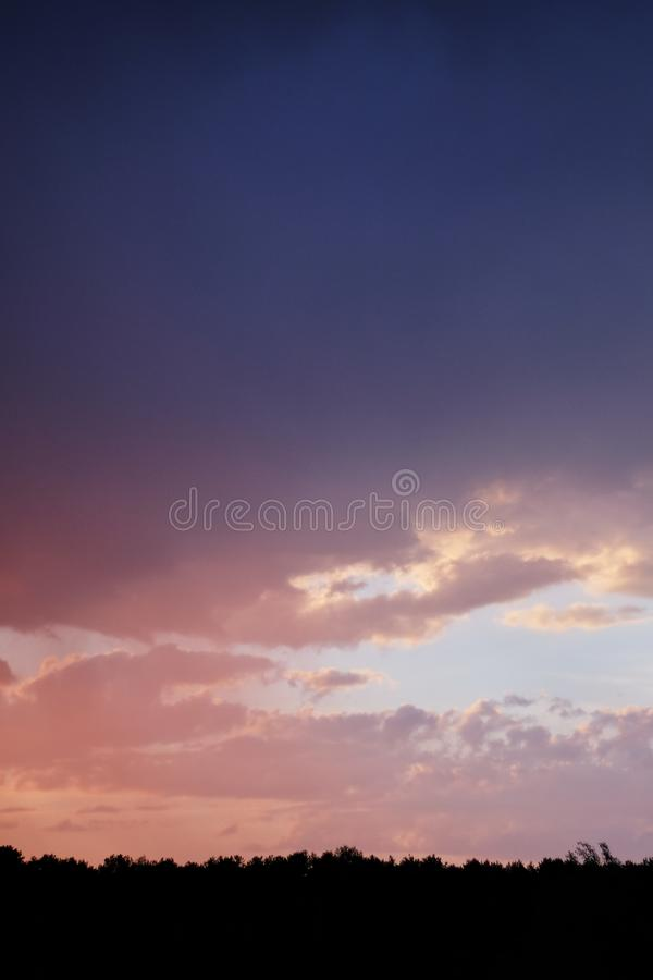 Magical sunset over forest. Silhouette of trees against burned evening sky royalty free stock photos