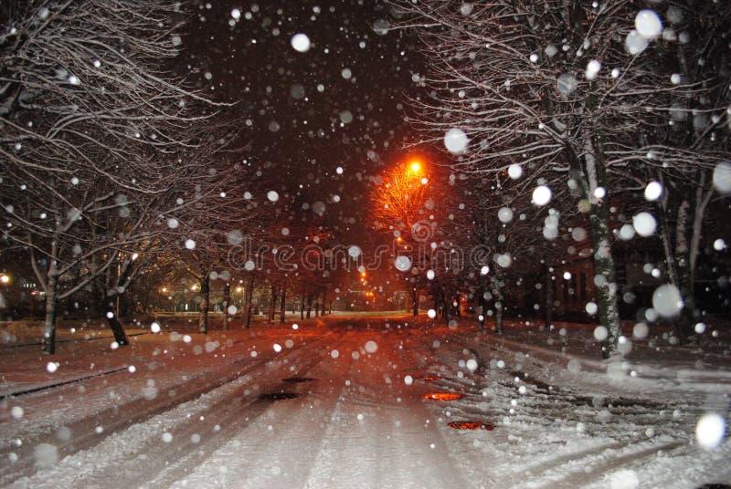Magical vinter royaltyfria bilder