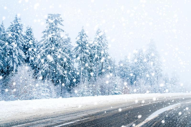 Magical winter road, snow covered trees and falling snow royalty free stock photos