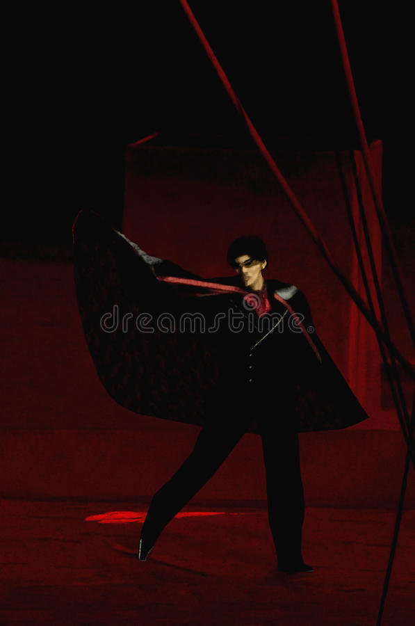 Download Magician Royalty Free Stock Photo - Image: 19211005
