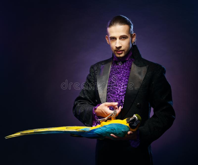 Magician man in stage costume. Young handsome brunette magician man in stage costume with his trained parrot royalty free stock images