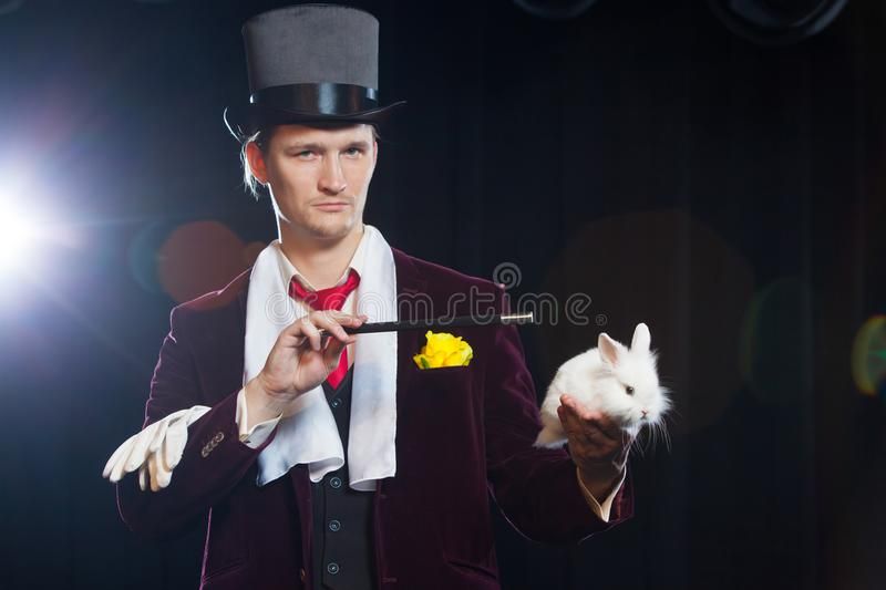 Magician with rabbit, Juggler man, Funny person, Black magic, Illusion on a black background royalty free stock photography