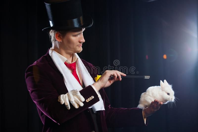 Magician with rabbit, juggler man, funny person, black magic, illusion on a black background royalty free stock photo