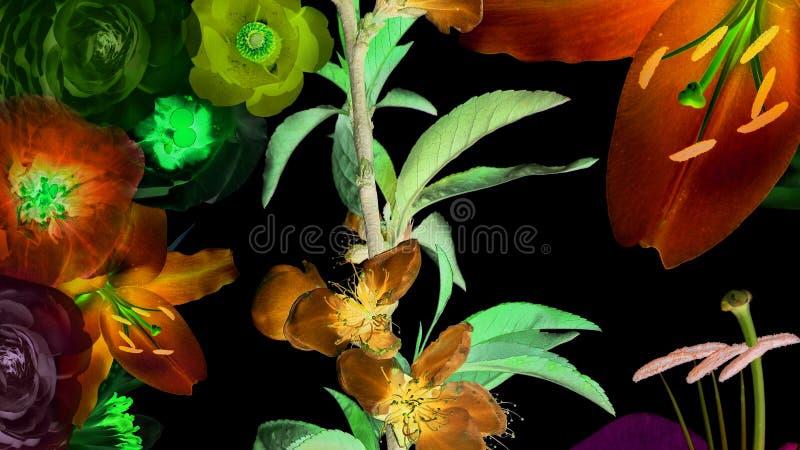 Magiczni świecący kwiaty zdjęcia royalty free