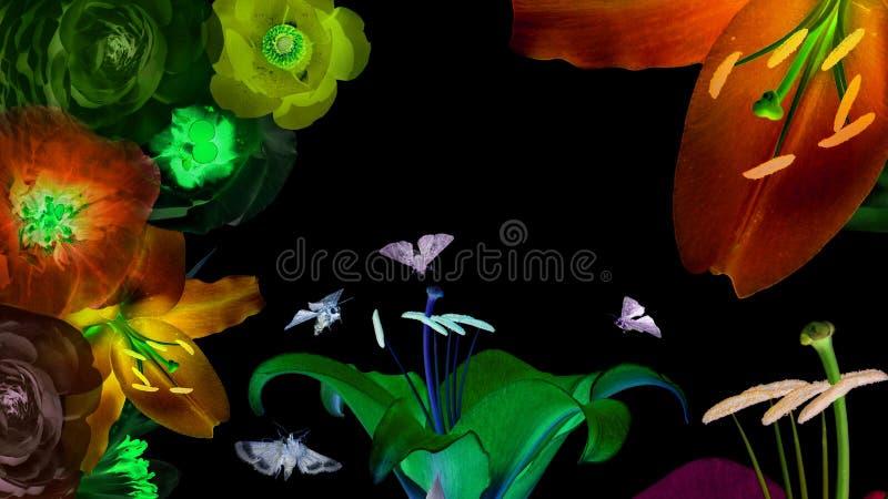 Magiczni świecący kwiaty obrazy stock