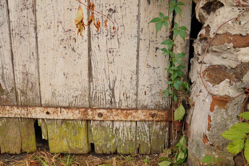Magiczni drzwi zdjęcia stock