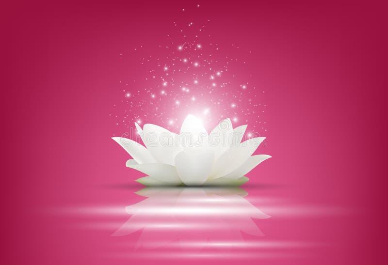 Magiczny Biały Lotosowy kwiat na różowym tle ilustracja wektor
