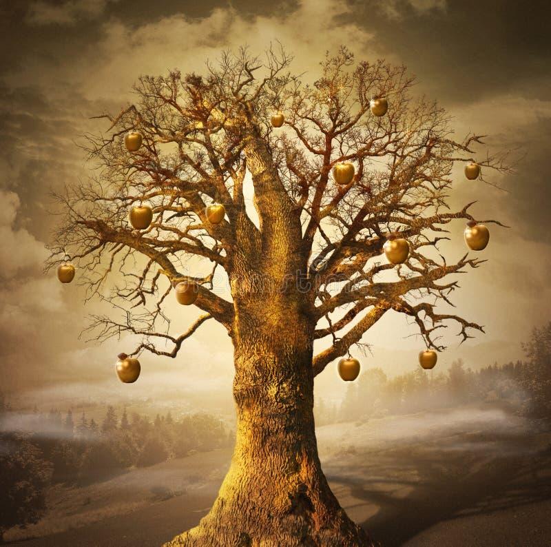 Magiczny drzewo z złotymi jabłkami. obraz stock