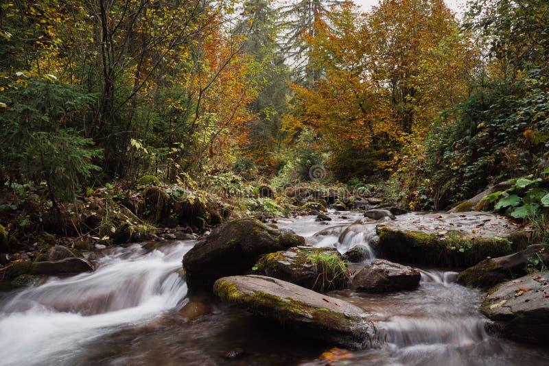 Magiczny halny strumień z kaskadami w jesień lesie zdjęcia stock