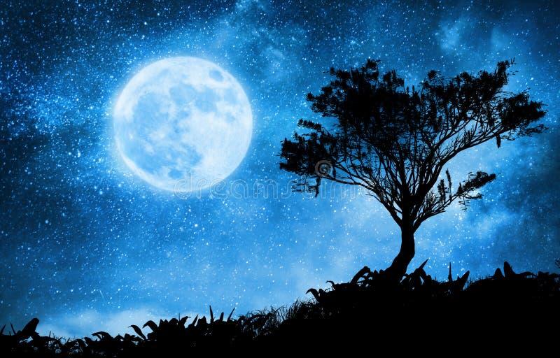 Magiczny noc krajobraz z gwiaździstym niebem royalty ilustracja