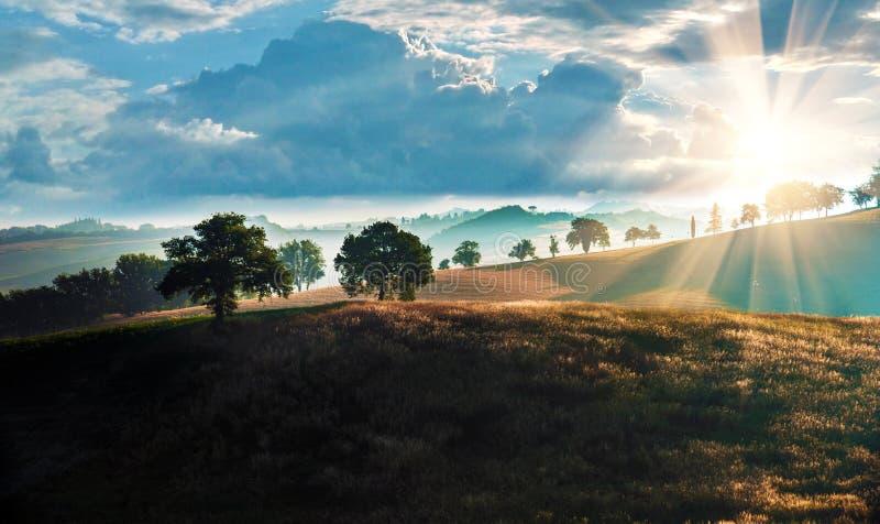 Magiczny piękny krajobraz z drzewami w mgle w wzgórzach przeciw tłu chmurny niebo w Tuscany, Włochy przy wschód słońca obraz stock
