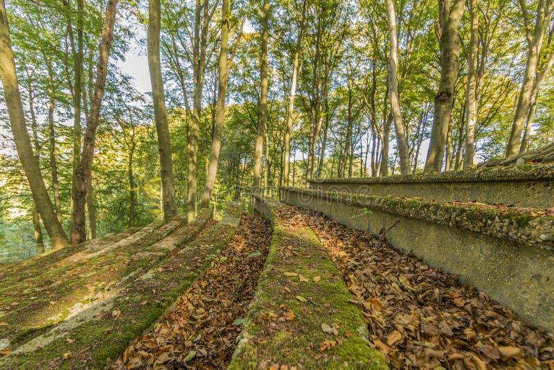 Magiczny wizerunek schody ruiny amfiteatr na otwartej przestrzeni obraz royalty free