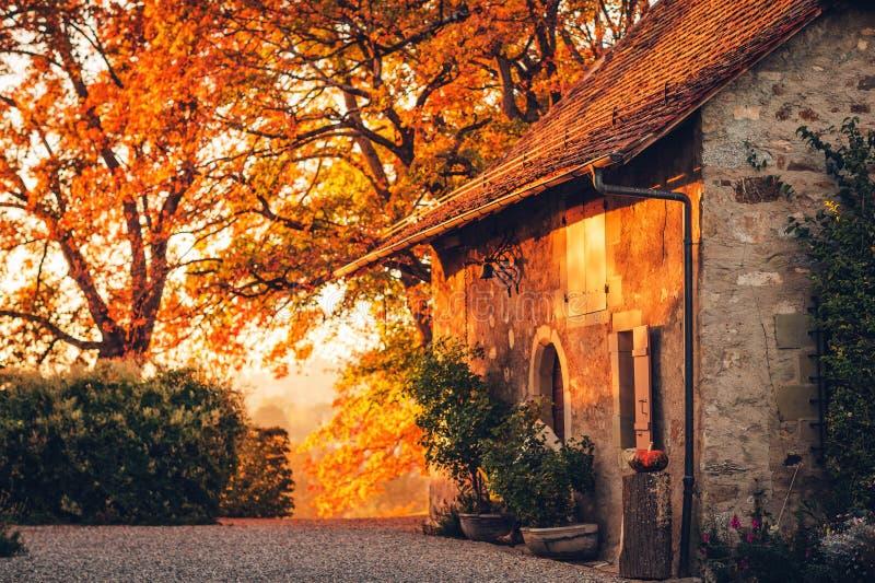 Magiczny złoty światło nad starym małym cosy domem zdjęcia royalty free