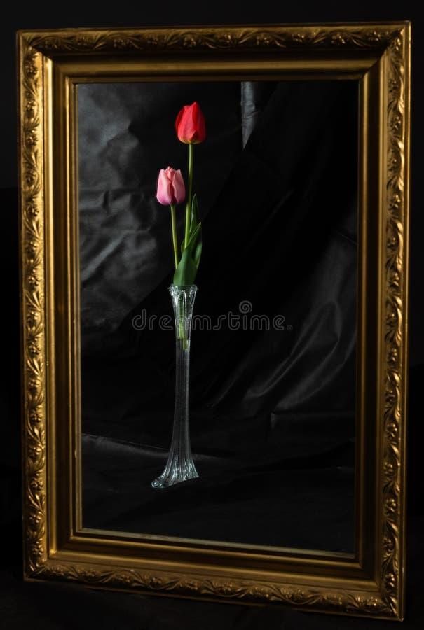 Magie abstraite Fleurs de tulipe dans la chambre noire se reflétant dans le miroir image libre de droits