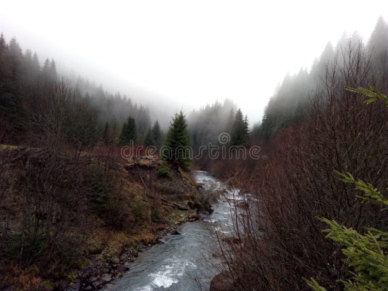 Magie de brouillard photos libres de droits