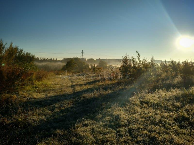 Magie du soleil de matin photographie stock libre de droits